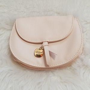 Chloé Parfum Small Blush Pink Clutch